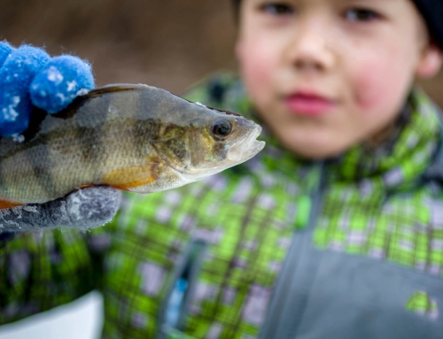 Your Guide to the Great Meredith Rotary Fishing Derby