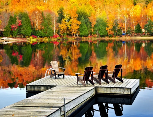 Fall in Love with New Hampshire This Thanksgiving